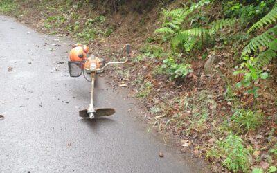 El Ayuntamiento ejecuta la limpieza y acondicionamiento de las pistas agrícolas